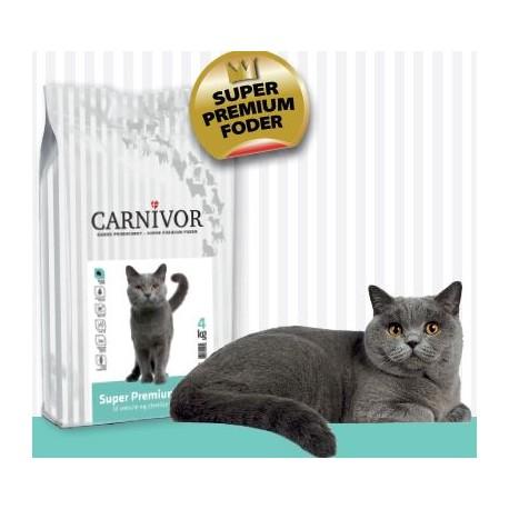 Carnivor kattefoder